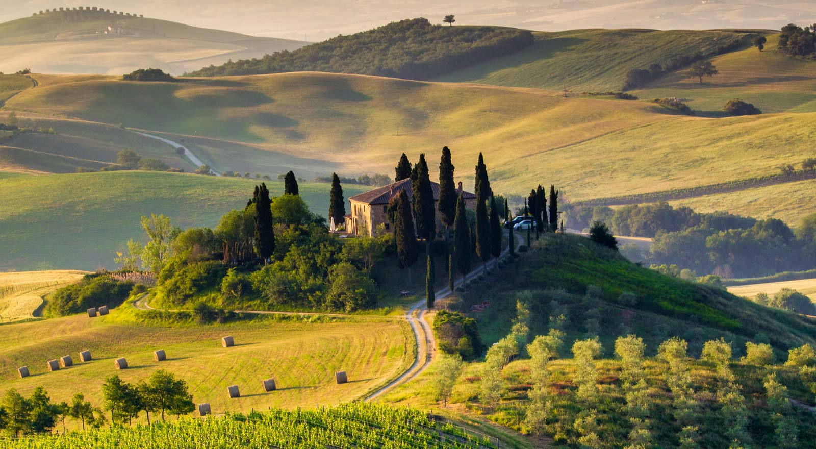 Top Wine Tours In Florence